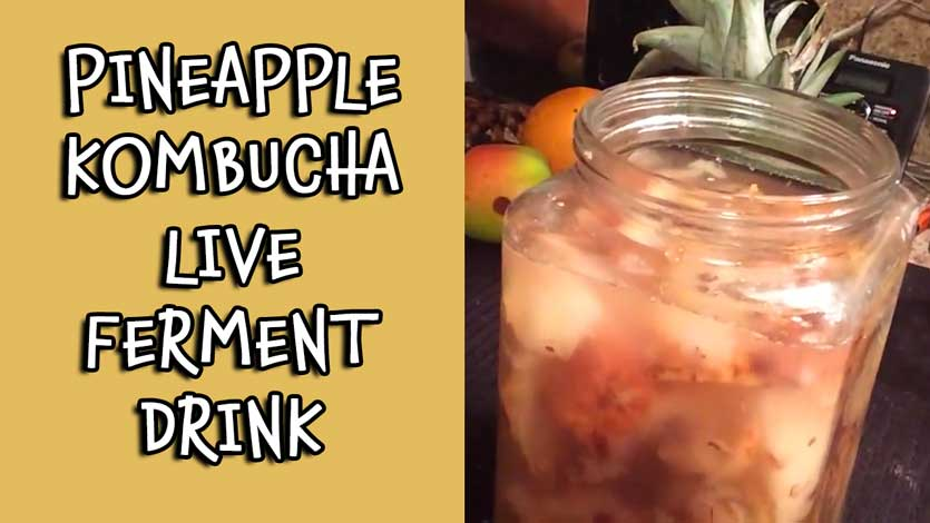Pineapple Kombucha Live Ferment Drink