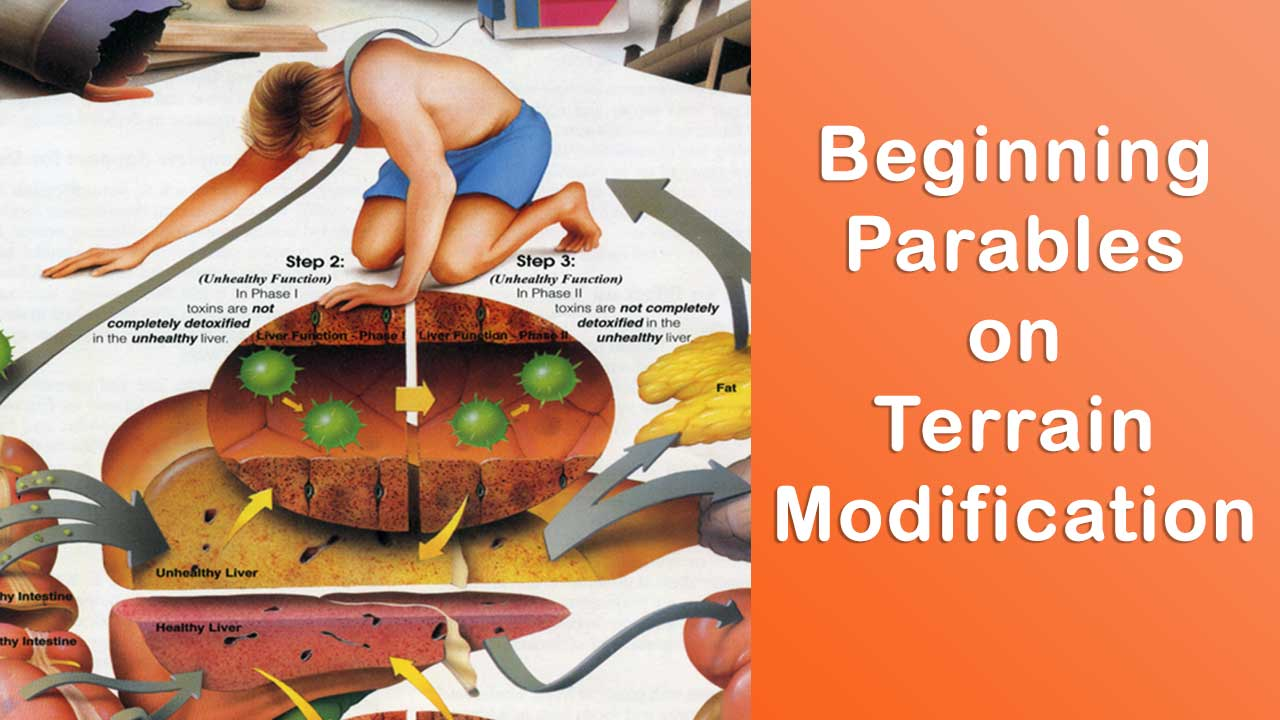 Beginning Parables on Terrain Modification