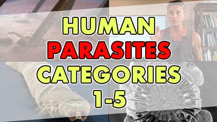 Human Parasites Categories 1-5