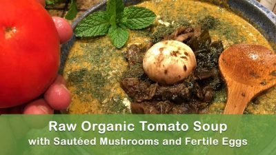 Raw Organic Tomato Soup with Sautéed Mushrooms and Fertile Eggs