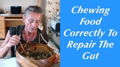 Chewing Food Correctly To Repair The Gut