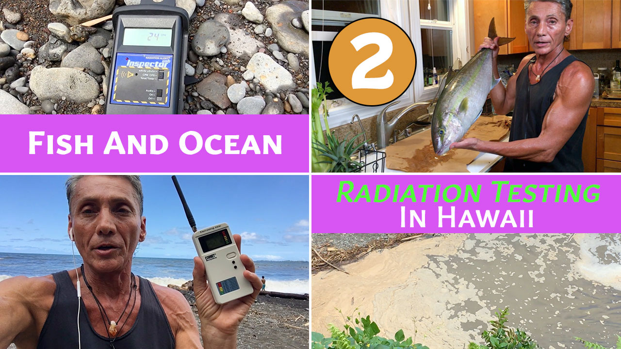 Fish And Ocean Radiation Testing In Hawaii Part 2