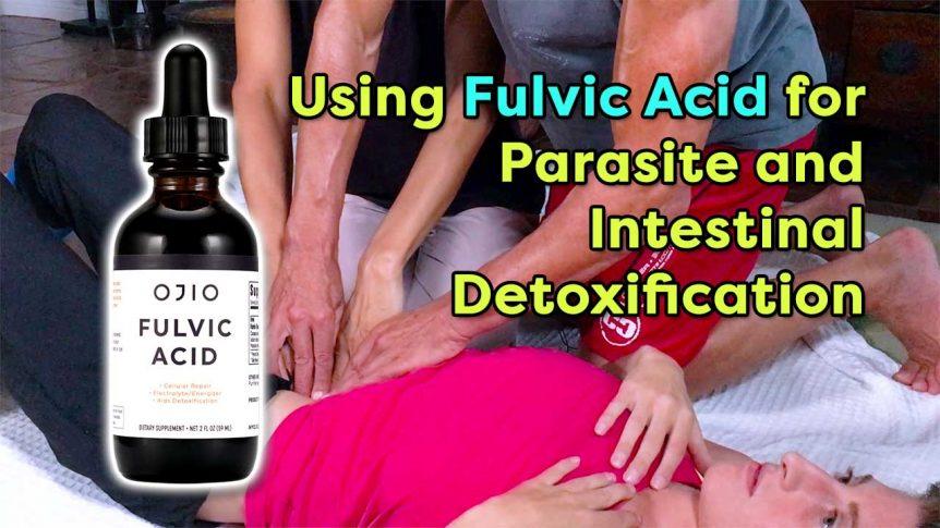 Using Fulvic Acid for Parasite and Intestinal Detoxification