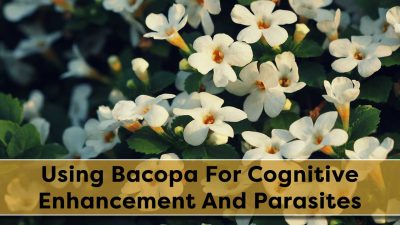 Using Bacopa For Cognitive Enhancement And Parasites